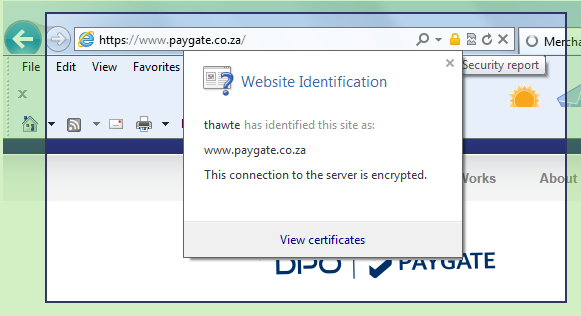 Security Policy by PayGate accepting online payments worldwide
